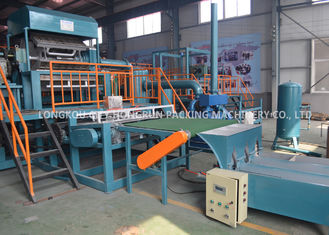 High Productive Paper Pulp Egg Carton Machine With 1 Year Warranty