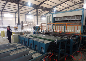 Automated 8 Faces Rotary Paper Egg Box Machine / Egg Tray Production Line