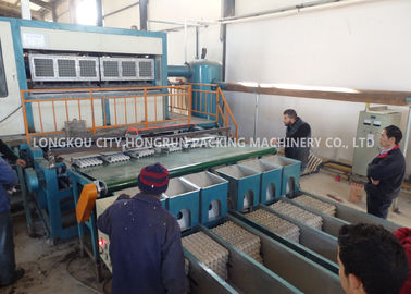 Recycled Waste Paper Egg Tray Machine , Paper Pulp Moulding Machine